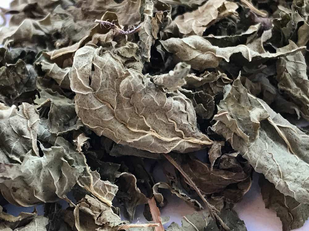 How To Dry Out Tea Leaves